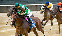 NEW YORK, NY - MAY 13: #3 Hawksmoor ridden by Julien Leparoux wins the Beaugay Stakes by a nose at Belmont Park on May 13, 2017 in Elmont, New York. (Photo by Dan Hearyi/Eclipse Sportswire/Getty Images)