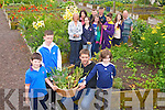 FOOD FOR THOUGHT: The residents of Bruach na hAbhann youth and community presenting Ronan Doherty of Arlington Lodge with fruit and veg grown at Moyderwll allotments on Saturday front l-r: Sam Donovan, Dillon O'Connor, Ronan Doherty and Jordan O'Shea. Back l-r: Anne O'Connor, Linda Morarty, Kelly Donovan,  Wayne O'Brien, Anna McSweeney, Peter Murphy, Kaylee Molloy, Jade Falvey and Oliver Fahy.