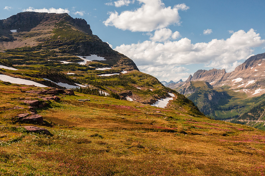 Wide canyons, patches of snow, colorful rocks, and flowers are seen along the hillsides of Logan Pass, one of the more popular areas of Glacier National Park, Montana.