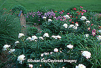 63821-042.14 Perennial butterfly hummingbird garden  Miscanthus, Peonies, Painted daisies,chives   IL
