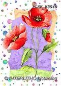 Kris, FLOWERS, BLUMEN, FLORES, paintings+++++,PLKKK3540,#f#, EVERYDAY
