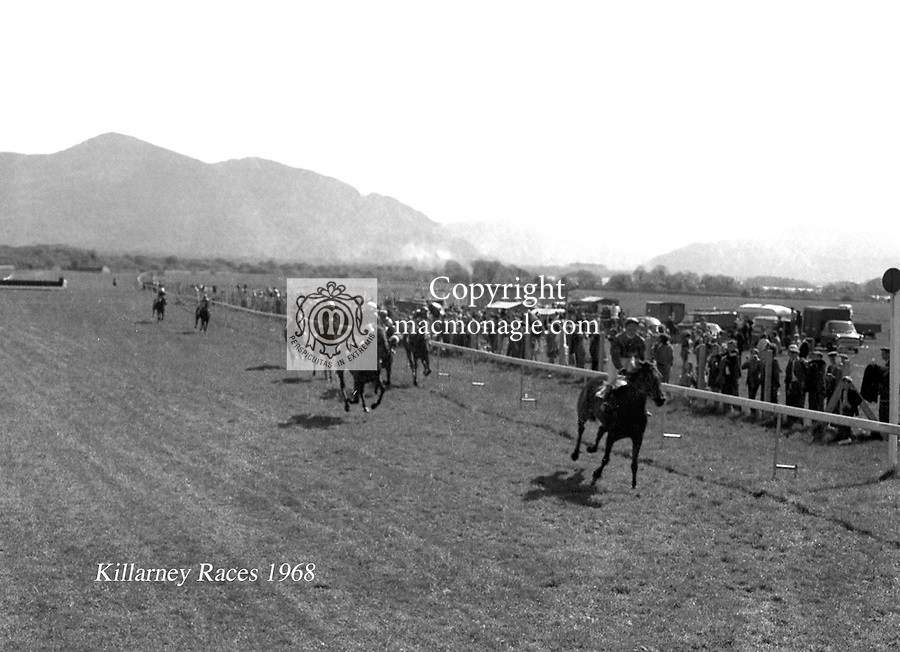 Killarney races 1968.Picture by Donal MacMonagle