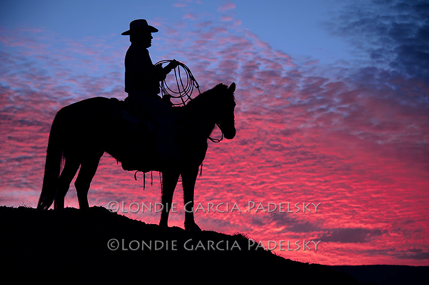 Silhouetted cowboy riding horseback at sunset. San Luis Obispo, California