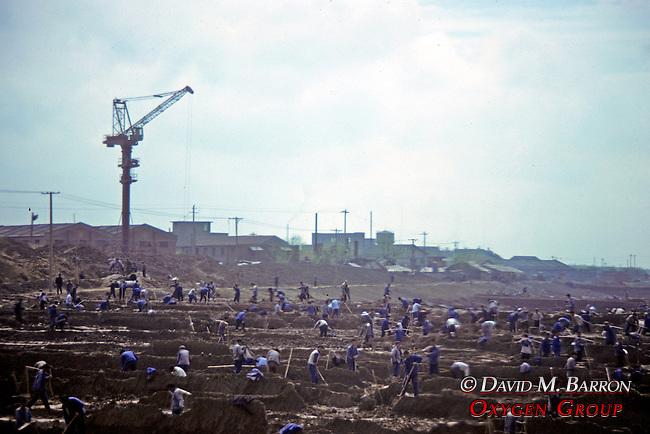 Workers In Field