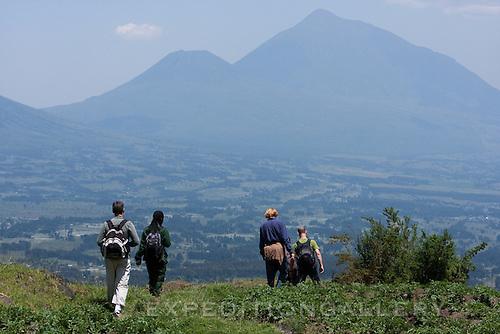 Trekking through rural farmlands bordering Volcanoes National Park (Parc National des Volcans), Rwanda.