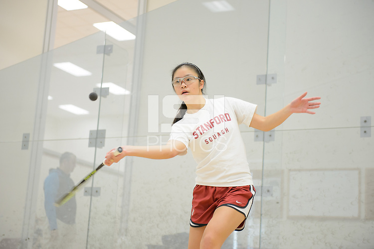 Stanford, California, 12-04-2013-  CC Ho of Stanford Squash 2013.