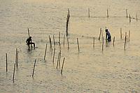 Fishermen, Pulicat Lake, Tamil Nadu, India