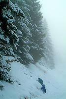 Two children playing under fir trees covered with snow, Chabanon, French Alps, France.