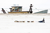 Musher Blake Freking runs on the Bering Sea with Swanberg's dredge and the old White Alice early warning site in the background 1 mile from the Nome finish during the 2010 Iditarod