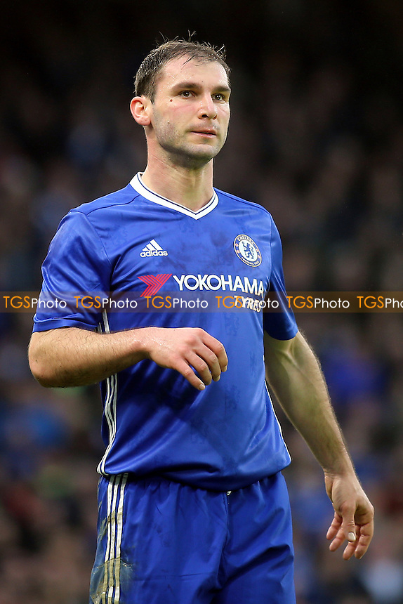 Branislav Ivanovic of Chelsea during Chelsea vs Peterborough United, Emirates FA Cup Football at Stamford Bridge on 8th January 2017