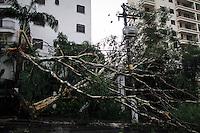 SÃO PAULO,SP,18 FEVEREIRO 2013 -  CHUVA ZONA LESTE  - A forte chuva que caiu na tarde de hoje derrubou  arvore sobre um carro  na Rua Mario Augusto do Carmo  na Vila prudente   zona leste.FOTO ALE VIANNA - BRAZIL PHOTO PRESS.