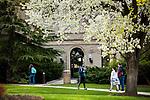 1704-10 GCS Spring 0052<br /> <br /> 1704-10 GCS Spring<br /> <br /> April 6, 2017<br /> <br /> Photography by Nate Edwards/BYU<br /> <br /> &copy; BYU PHOTO 2016<br /> All Rights Reserved<br /> photo@byu.edu  (801)422-7322