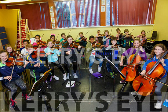 Kerry School of Music string ensemble  part of Culture Night on Friday