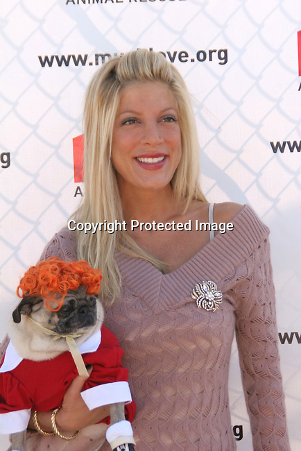 Tori Spelling<br />3rd Annual Bow-Wow-Ween<br />Barrington Park<br />Los Angeles, CA, USA<br />Sunday, October 31, 2004<br />Photo By Celebrityvibe.com/Photovibe.com, <br />New York, USA, Phone 212 410 5354, <br />email: sales@celebrityvibe.com