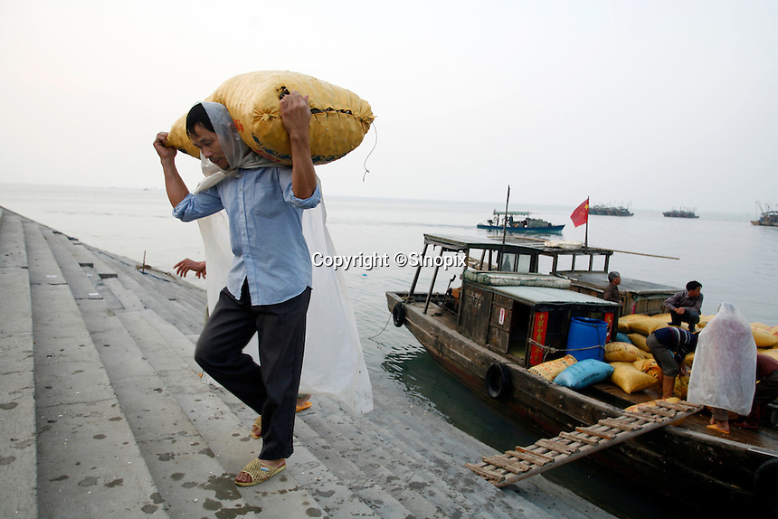 Workers unload sacks of harvested clams from a fishing boat in Beihai, Guangxi Province, China. .11 Apr 2007