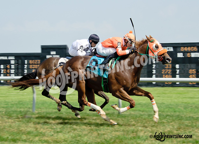 I. E. Flash winning at Delaware Park racetrack on 7/2/14