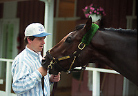 Horse racing; racehorse; Thoroughbred; racetrack, Personal Hope, Mark Hennig, trainer and horse, Pimlico Racecourse, Triple Crown