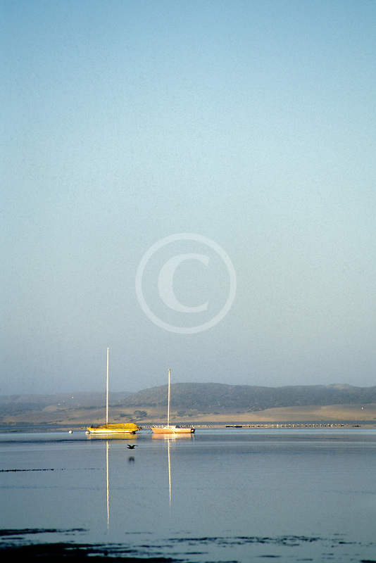 California, San Luis Obispo County, Morro Bay harbor, sailboats