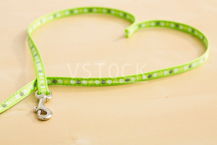 Pet leash in heart shape
