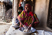 28 year old Asha Devi kneads flour in her house in Saptari, Nepal. <br /> Asha Devi got married when she was 14. She got pregnant after 6 months of her marriage. Her first child survived for 6 days, she woke up next to a dead baby. She was pregnant two months later. Asha Devi's 2nd daughter survived for 9 months and later died due to prolonged fever. 3 months after her daughter died, Asha was pregnant again and within w months, she had spontaneous abortion. She was pregnant with Radha Kumari mandal who was acutely malnourished. Radha was admitted when she was 36 months old on October, 20th 2013. MUAC - 110 mm, Weight - 7 kg, Height - 75 cm. Radha was discharged on Dec 6, 2013 - her MUAC at the time of discharge was 128mm, Weight 8.8kg and height- 75.5 cm. She consumed 100 sachets of RUTF and gained 5gm/day while on the programme. <br /> Rukmini, her second daughter was born a year after Radha was born. Rukmini was severely malnourished too. She was admitted on Feb 16th, 2014. Her MUAC was 119mm, weight - 11 kg, and height - 96 cm. Her third daughter Sharda is severely malnourished. Sharda is under RUTF.  <br /> Asha Devi is pregnant for the 7th time and is 6 months pregnant.