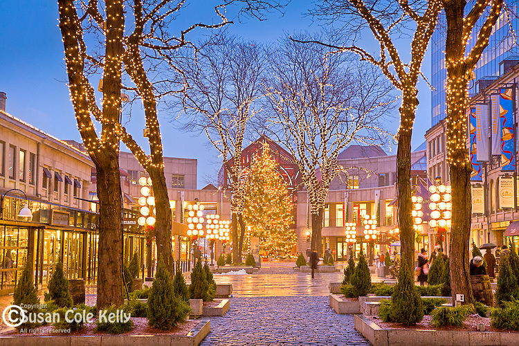Christmas lights at Quincy Market, Faneuil Hall Marketplace, Boston, MA
