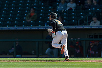 Oregon State Beavers catcher Adley Rutschman (35) hits a home run during a game against the Gonzaga Bulldogs on February 16, 2019 at Surprise Stadium in Surprise, Arizona. (Zachary Lucy/Four Seam Images via AP)