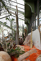 Desert and Arid Lands Glasshouse, 1930s, Jardin des Plantes, Museum National d'Histoire Naturelle, Paris, France. Low angle view of the recently restored and redeveloped glasshouse with cactus and rocks.
