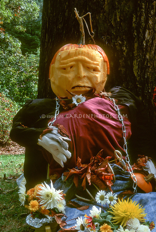 Carved pumpkin head face made into a person wearing clothing, and with flowers, leaning against a tree