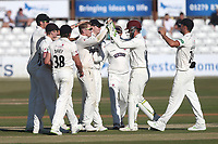 Dom Bess of Somerset celebrates with his team mates after taking the wicket of Alastair Cook during Essex CCC vs Somerset CCC, Specsavers County Championship Division 1 Cricket at The Cloudfm County Ground on 25th June 2018