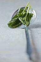 Gastronomie Générale: Epinards - Stylisme : Valérie LHOMME
