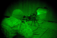 a US sniper atteched to C Company, 1st battalion, 506th, 101st airborne division scans with his night vision rifle scope  while conducting a night raid with the purpose of arresting two suspected major figures of the Sunni insurgency in their sector in Eastern Ramadi, Al Anbar province, Iraq on WED Jan 11 2006. the mission was divided into two sections. SECTION ONE  with the prurpose of blocking the suspected insurgents from escaping and providing sniper fire for the area and SECTION 2 raiding the house were the two were suppose to be hiding. the two suspected insurgents were nt to9o be found.