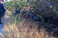 Quer&eacute;taro, Qro. 26 de diciembre de 2017.- El conductor de una camioneta tipo pick up perdi&oacute; el control de su unidad en una curva y sale del camino en la subida al fraccionamiento El Campanario, no se reportaron lesionados.<br /> <br /> Foto: Oscar Aguilar.