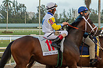 HALLANDALE BEACH, FL  JANUARY 27: #11 Seeking the Soul, ridden by John Velazquez, in the post parade of the Pegasus World Cup Invitational, at Gulfstream Park Race Track on January 27, 2018,  in Hallandale Beach, Florida. (Photo by Casey Phillips/ Eclipse Sportswire/ Getty Images)