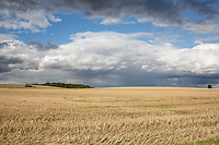 Autumn stubble field<br /> Picture Tim Scrivener 07850 303986<br /> &hellip;.covering agriculture in the UK&hellip;.