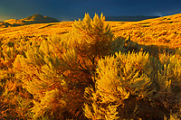 Storm light on grasslands, Near Cache Creek, British Columbia, Canada