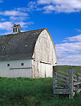 Latah County, ID<br /> Weathered round roof white barn with adjacent wooden cattle chute, near Potlatch