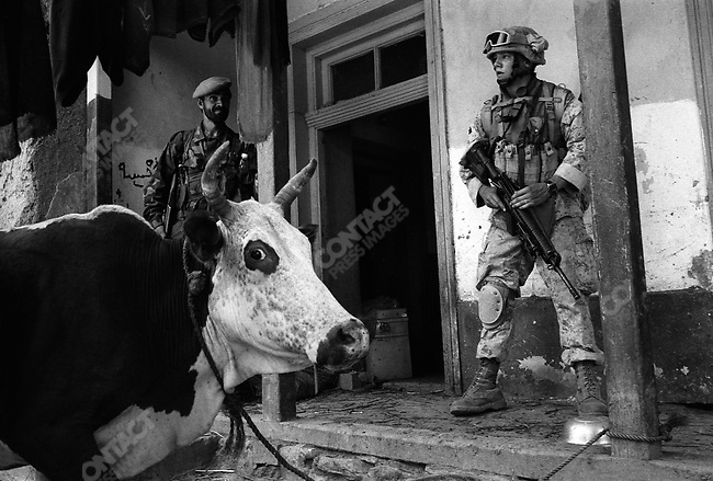 US Marines, 2ND Battilion, Echo CO. on weapons searches in Asadabad area, Afghanistan, September 2005