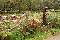Directional footpath sign on the Spey Way near Aviemore, Cairngorms National Park, Scottish Highlands, Uk