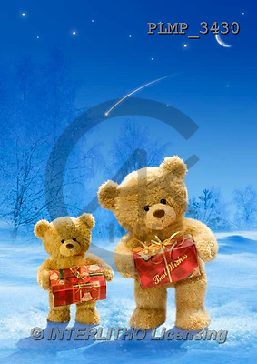 Marek, CHRISTMAS ANIMALS, WEIHNACHTEN TIERE, NAVIDAD ANIMALES, teddies, photos+++++,PLMP3430,#Xa# in snow,outsite,