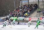 Stockholm 2014-03-01 Bandy SM-semifinal 1 Hammarby IF - V&auml;ster&aring;s SK :  <br /> V&auml;ster&aring;s supportrar p&aring; bortasektionen p&aring; Zinkensdamm under matchen<br /> (Foto: Kenta J&ouml;nsson) Nyckelord:  VSK Bajen HIF supporter fans publik supporters