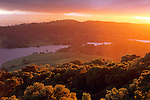 Sunset light on oak trees and hills above Anderson Lake, Santa Clara County, California