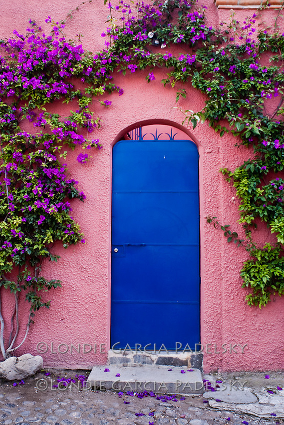 San Miguel De Allende Mexico & Mexican Door with Flower Arch | Londie Garcia Padelsky Photography