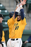 Third baseman Joey Porricelli (23) of the Merrimack Warriors is greeted by Alex Haba (5) after scoring a run in a game against the Michigan State Spartans on Saturday, February 22, 2020, at Fluor Field at the West End in Greenville, South Carolina. Merrimack won, 7-5. (Tom Priddy/Four Seam Images)