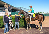 San Cristo winning at Delaware Park on 10/10/16