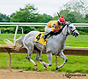 Almost A Lady winning at Delaware Park on 6/6/13