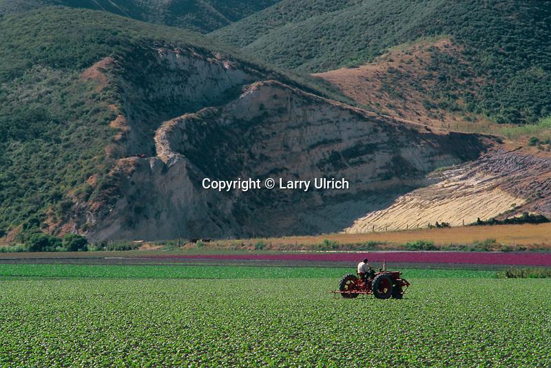 Santa Ynez River Valley<br />   near Lompoc<br /> Santa Barbara County<br /> California