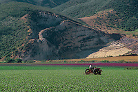 Santa Ynez River Valley<br />