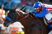 Caminetto with Rafael Bejarano up breaks his maiden at Del Mar Race Course in Del Mar, California on August 26, 2012.