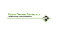 Vegetable Consultancy Services (UK) Ltd