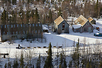 Warren Palfrey runs his team along old mining buildings in the Ophir mining district shortly before arriving at the Ophir checkpoint on Thursday afternoon during the 2008 Iditarod